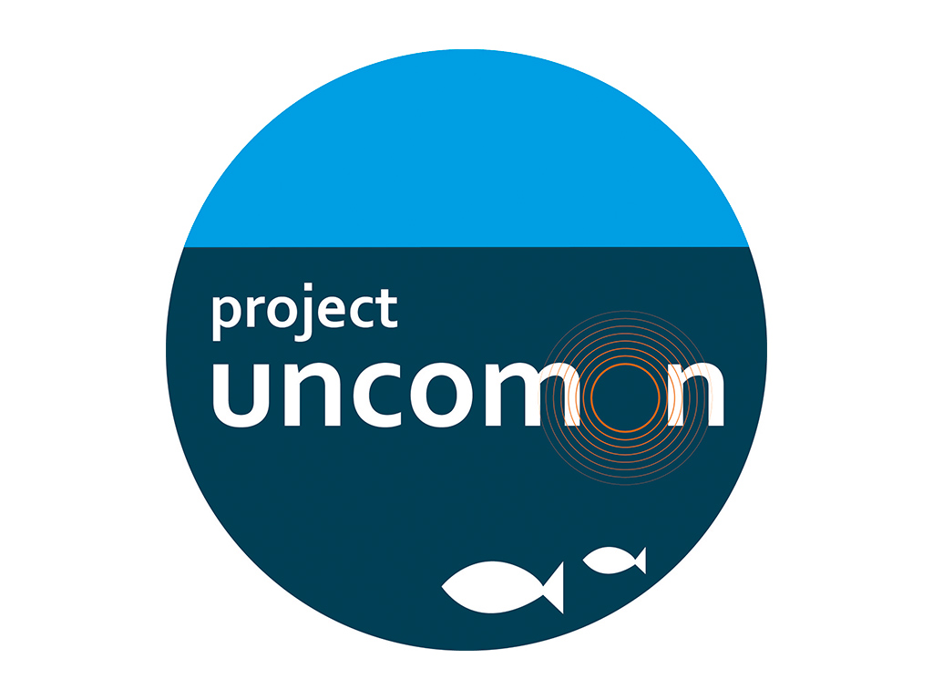 Diseño logotipos Noa Design
